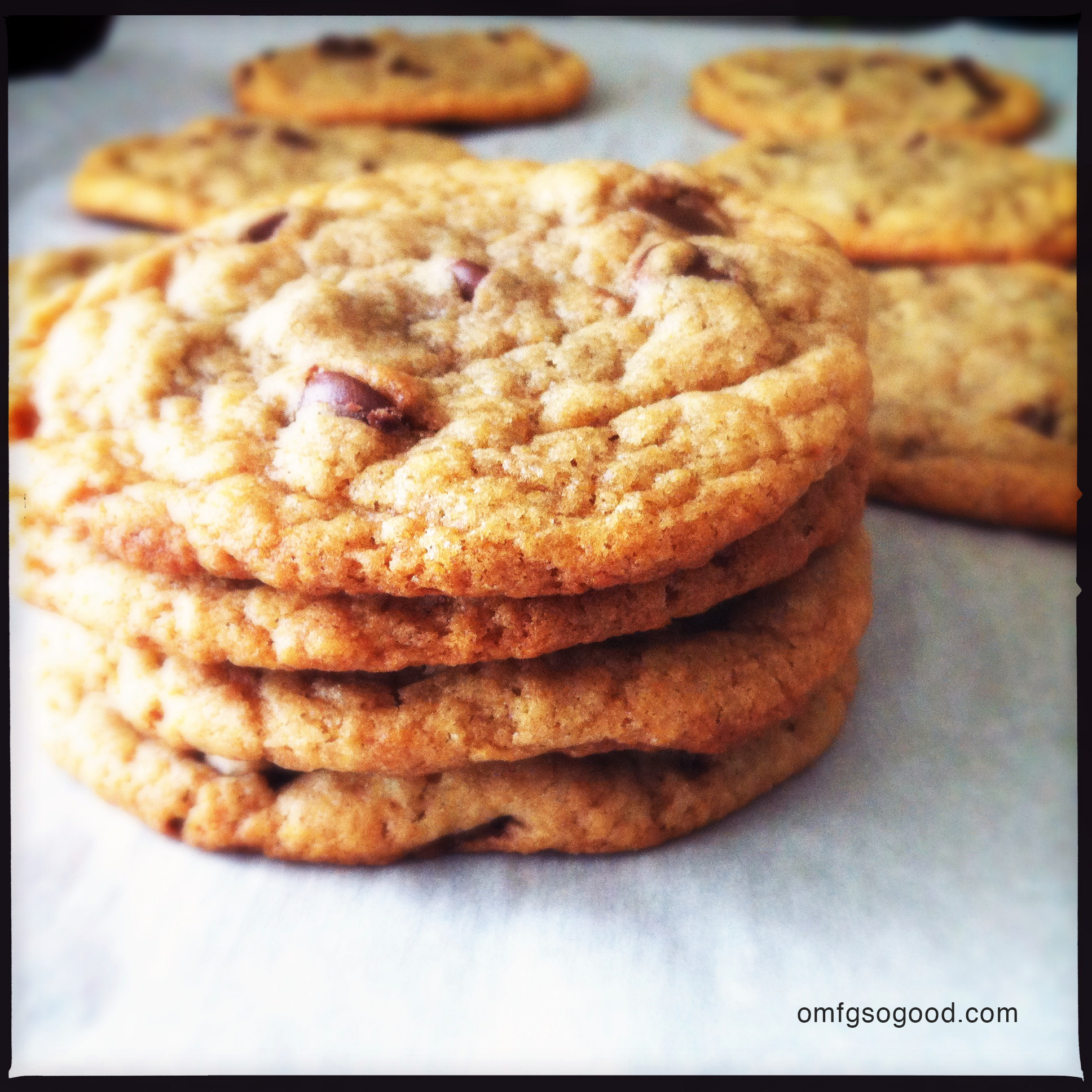 peanut butter banana chocolate chip cookies | omfg. so good.