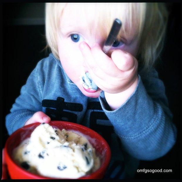 Malted-Vanilla-Bean-Chocolate-Chip-Ice-Cream-5