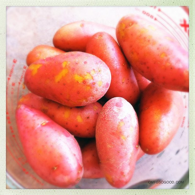 Baby-Red-Potatoes