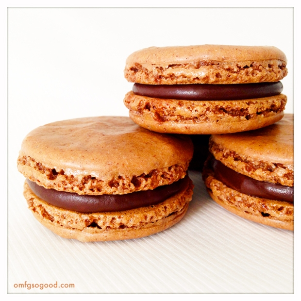 Chocolate-Cinnamon-Macarons2